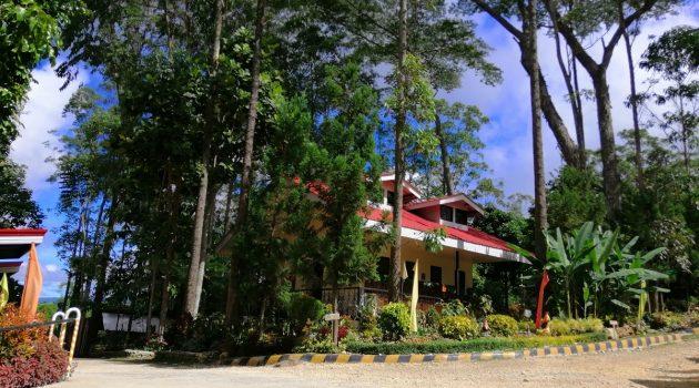 binahon-agroforestry-farm